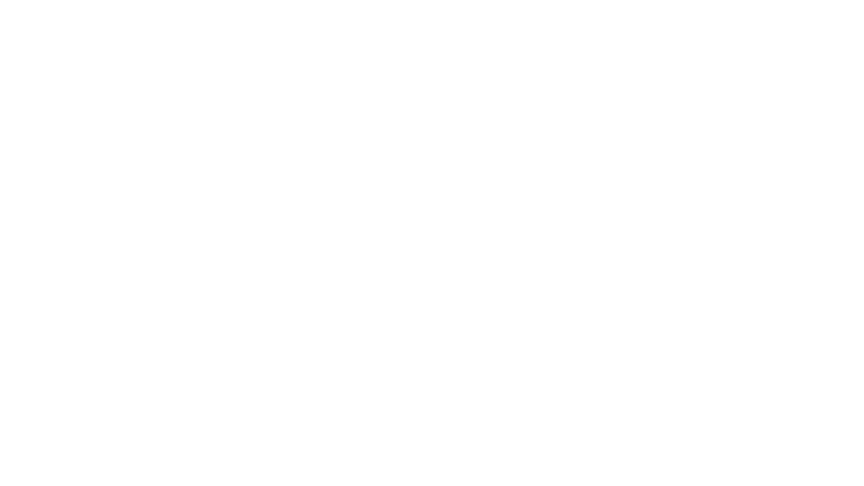 net of connections